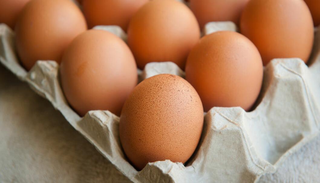 hur länge håller ägg efter utgångsdatum