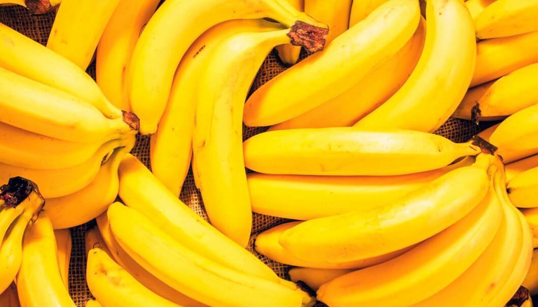 Så håller du bananerna fina