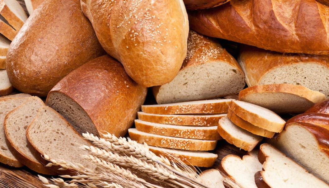 Så här förvarar du bröd för att det ska hålla längre.
