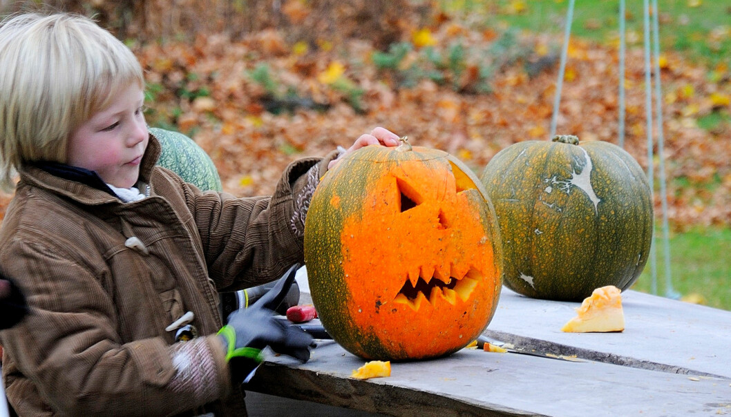 Pojke gör sin egen halloweenlykta av pumpa