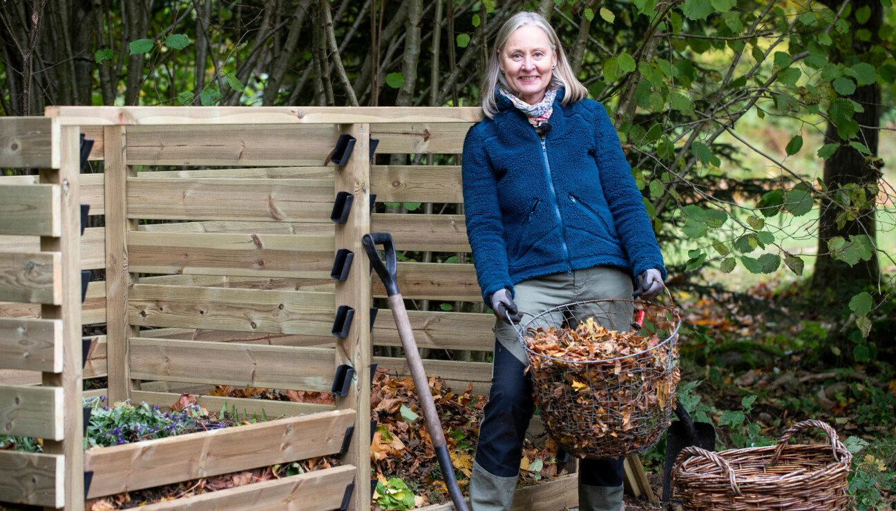 Anni Jähde redo att fylla upp komposten med torra löv och annat trädgårdsavfall.