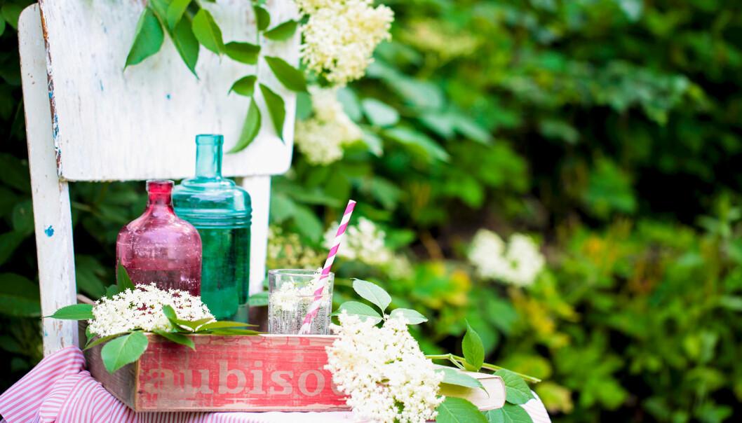 Antika trädgårdsmöbler – stol med saftbricka