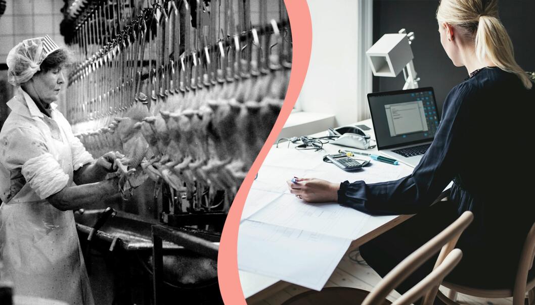 Till vänster, kvinna som jobbar med kycklingar i fabrik, till höger, kvinna jobbar med sin dator.