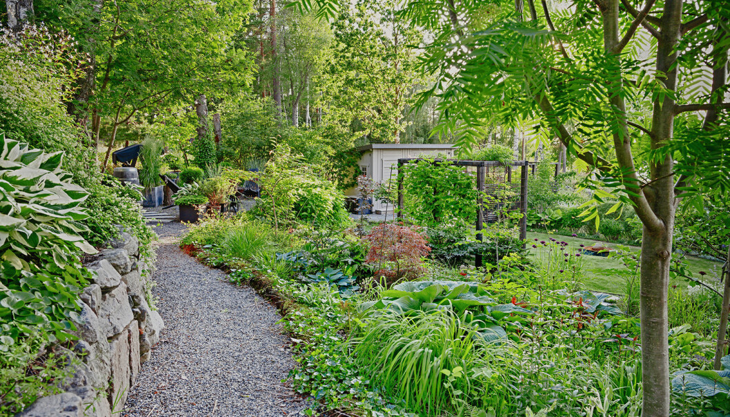 Överblick över Årets trädgård 2020.