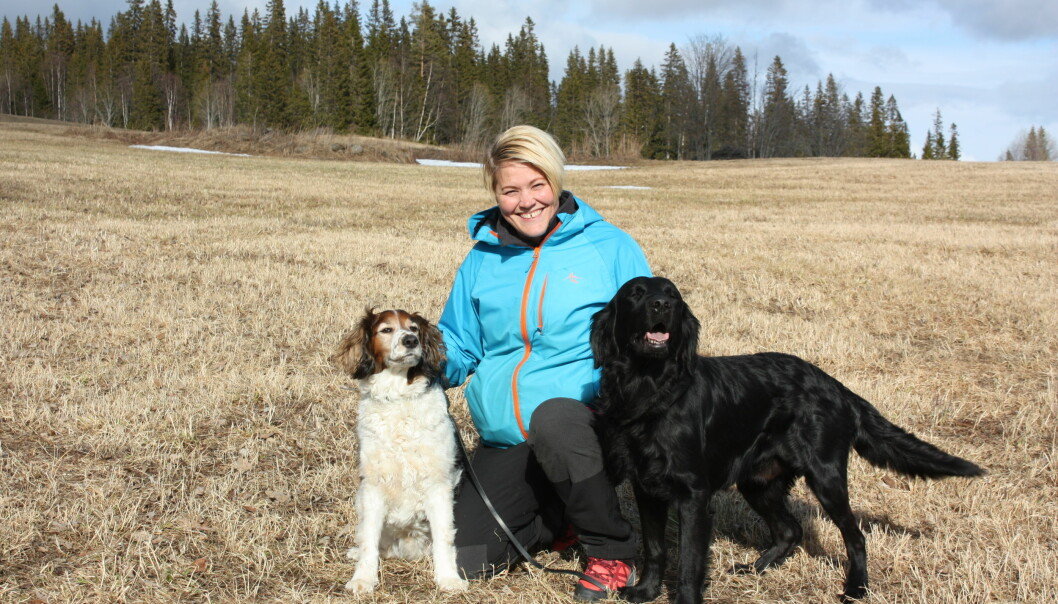Åsa sitter på huk på en åker med sina två hundar.