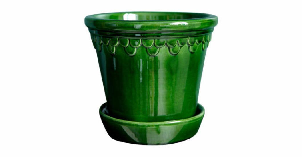 Kruka i grön färg från Bergs Potter