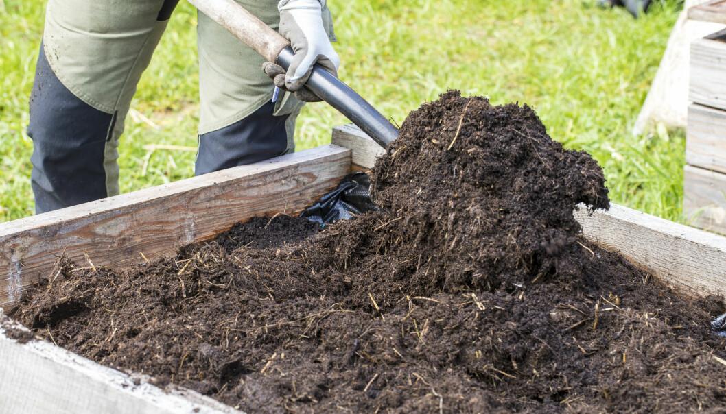 Blanda gödsel och jord ordentligt med en grep.