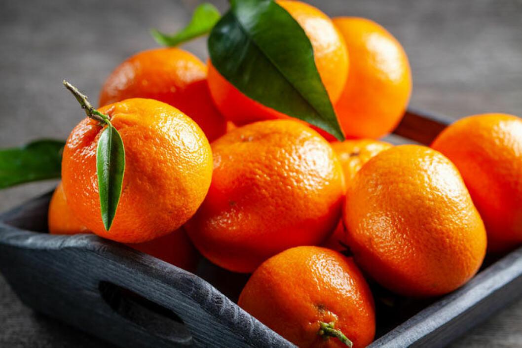 Clementinen är julens stapelvara, det är den småcitrus vi äter mest.