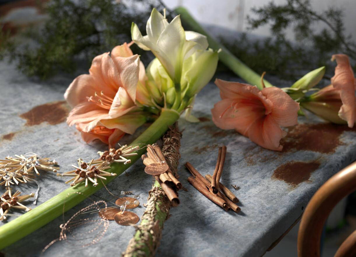Dekorera amaryllisstjälken med kanel, buljongtråd och andra vackra, juliga saker.
