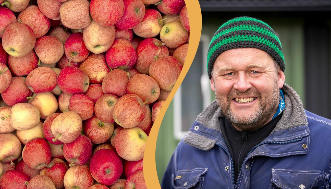 Delad bild. Till vänster: En samling äpplen. Till höger: Trädgårdsmästaren John Taylor.