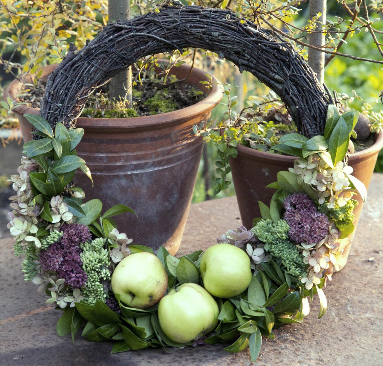 Höstkrans med vintergröna, hortensia, kärleksört och små äpplen.