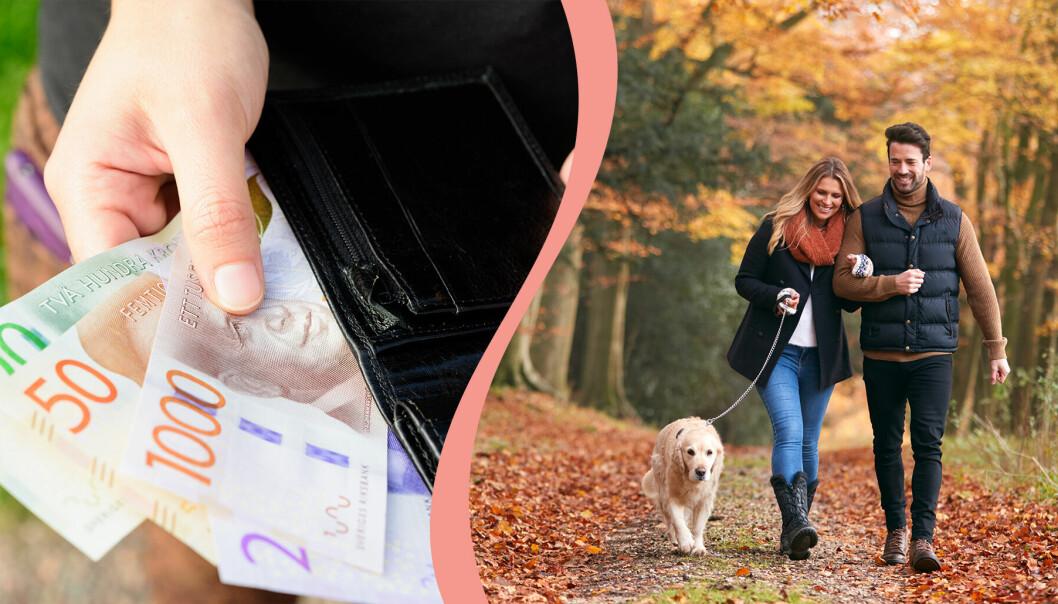 Till vänster, kontanter i en plånbok, till höger, ett par promenerar i skogen med en hund.