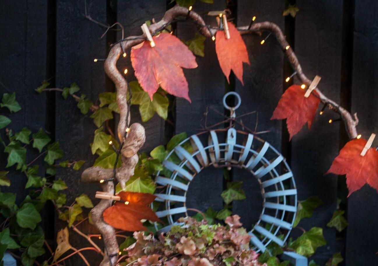 Ett praktfullt höstarrangemang med torkade löv och ljusslingor.