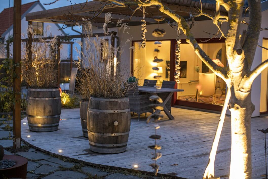 Sätten att belysa är oändliga. Nerfällda små ljuspunkter markerar längs trädäckets kant, både som dekoration och för att man inte ska trampa snett. Punktbelysning lyfter fram de vackra gräsen i tunnorna.