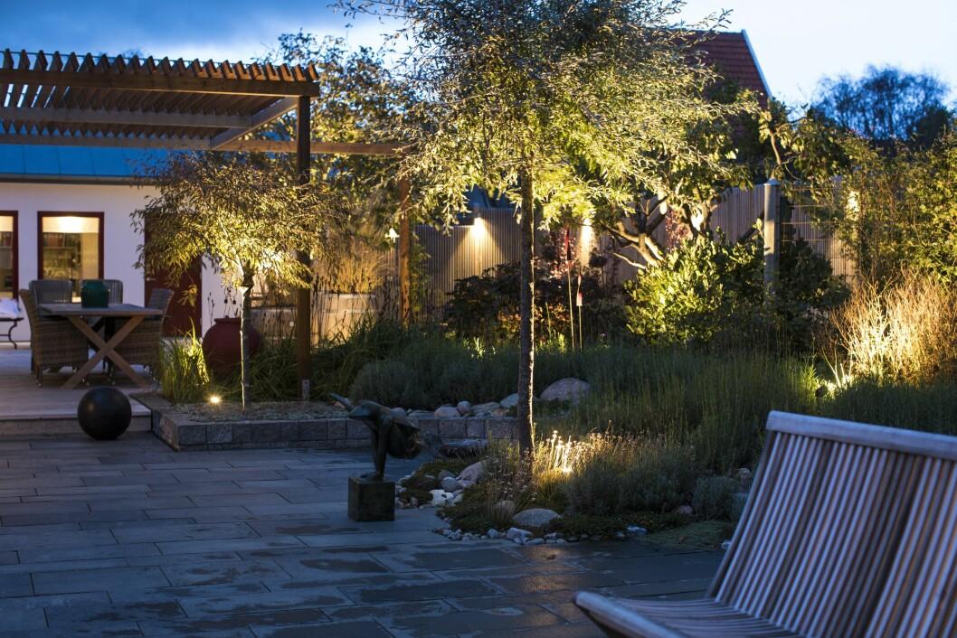 När skymningen faller tänds belysningen automatiskt i Britt-Marie och Pers trädgård och blir som ett extra rum. En trädgård utan belysning är numera otänkbar för dem. Ljuspunkter på flera ställen ger trädgården både bredd och djup.