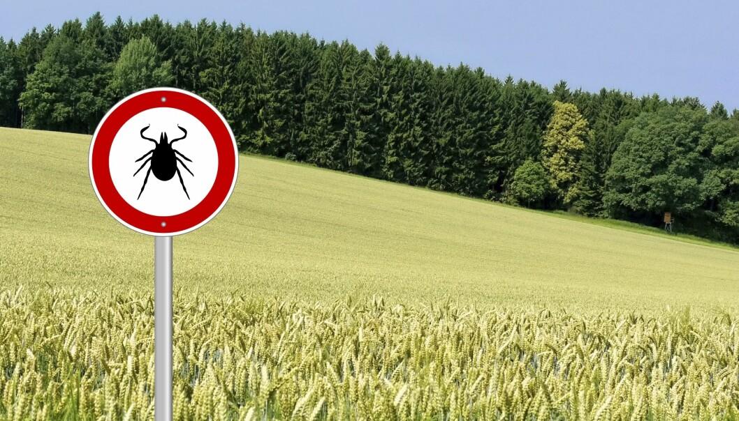 En skylt varnar för fästingar och fästingsmitta