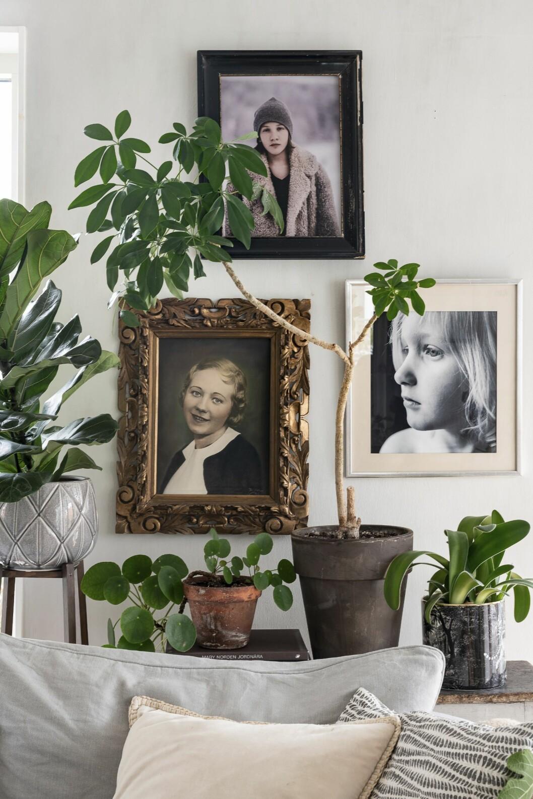 Gröna blad mot vit bakgrund skapar en skön stämning i rummet.