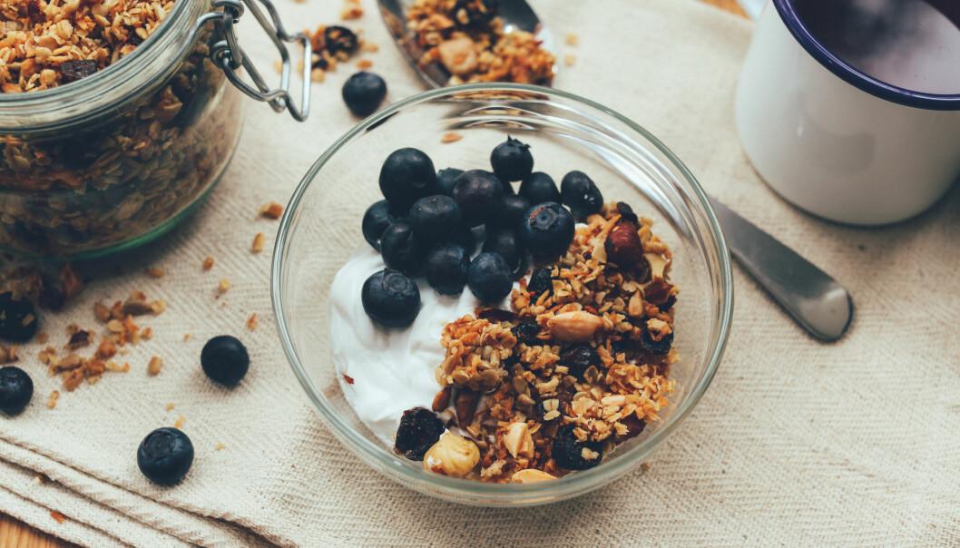 Skål med fet yoghurt, musli och blåbär.