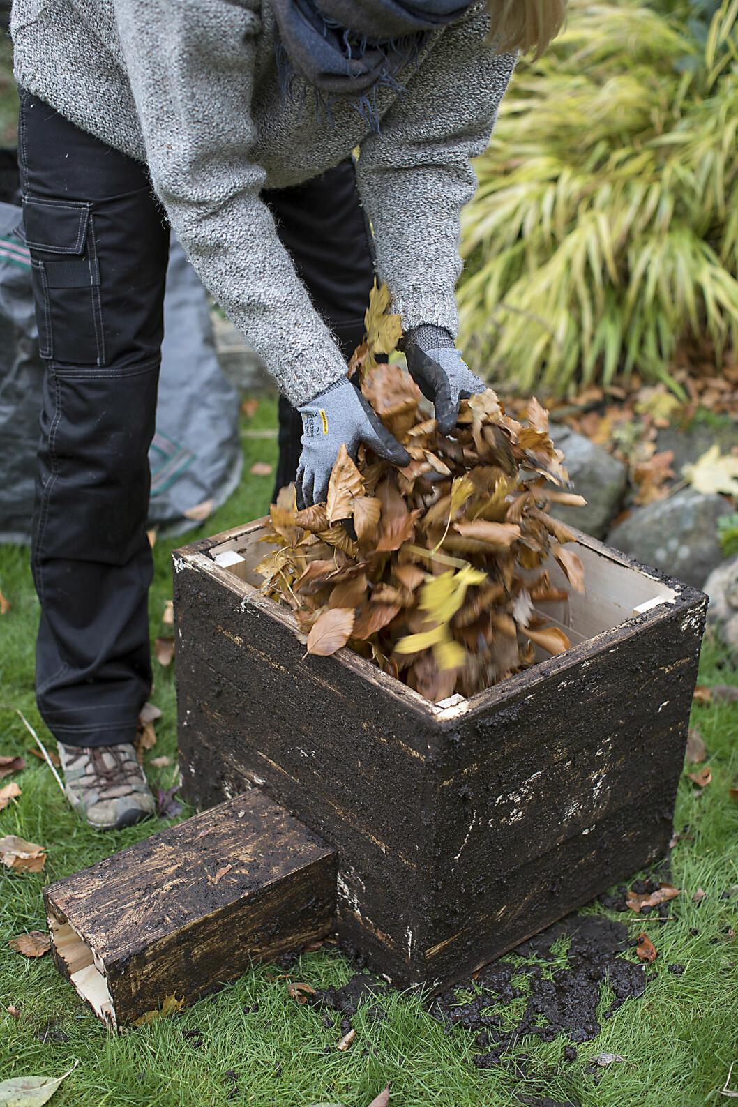 Fyll på med lite torra löv eller likande. Igelkottarna sköter själv slutfinishen.