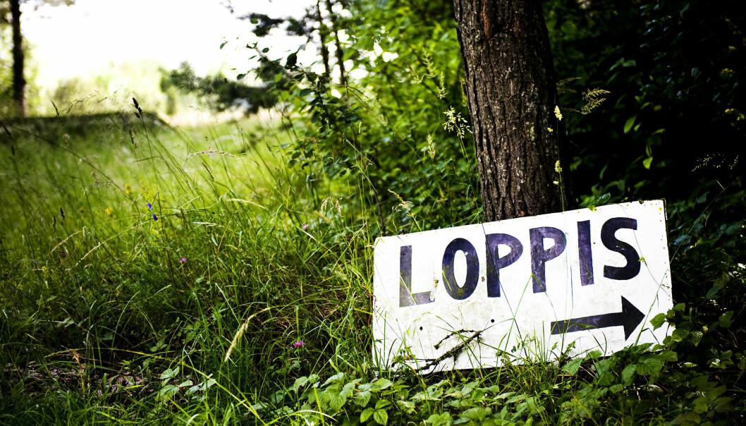 """Skylt med texten """"Loppis"""" i grönskan"""