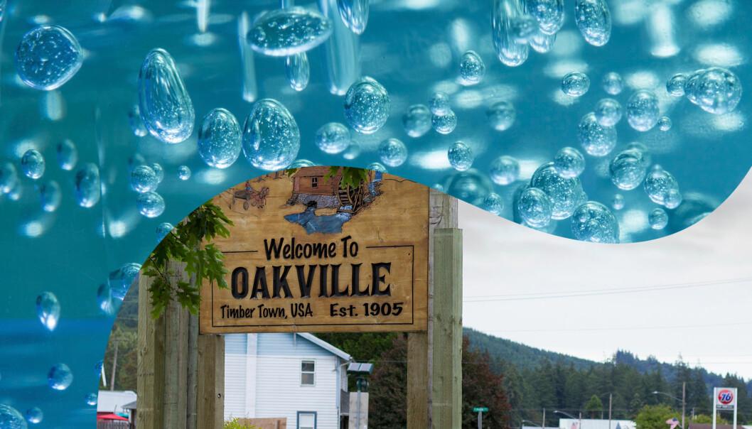 Kollage av staden Oakville och geléklumpar