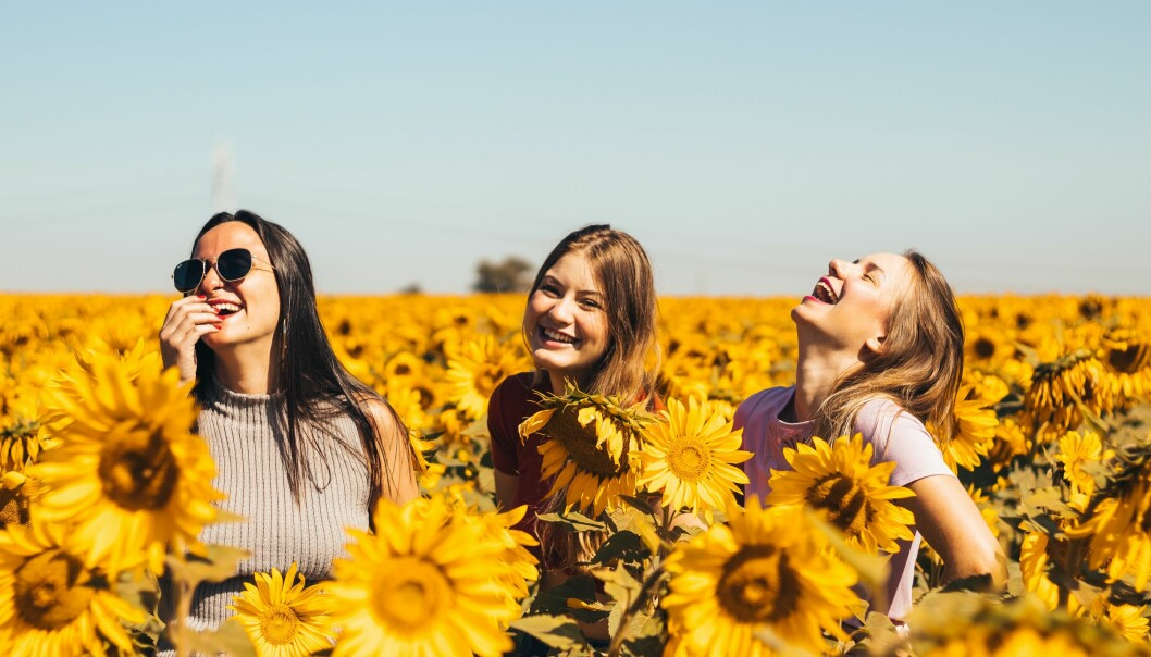 Tre vänner skrattar och är glada i solen på ett fält av solrosor.
