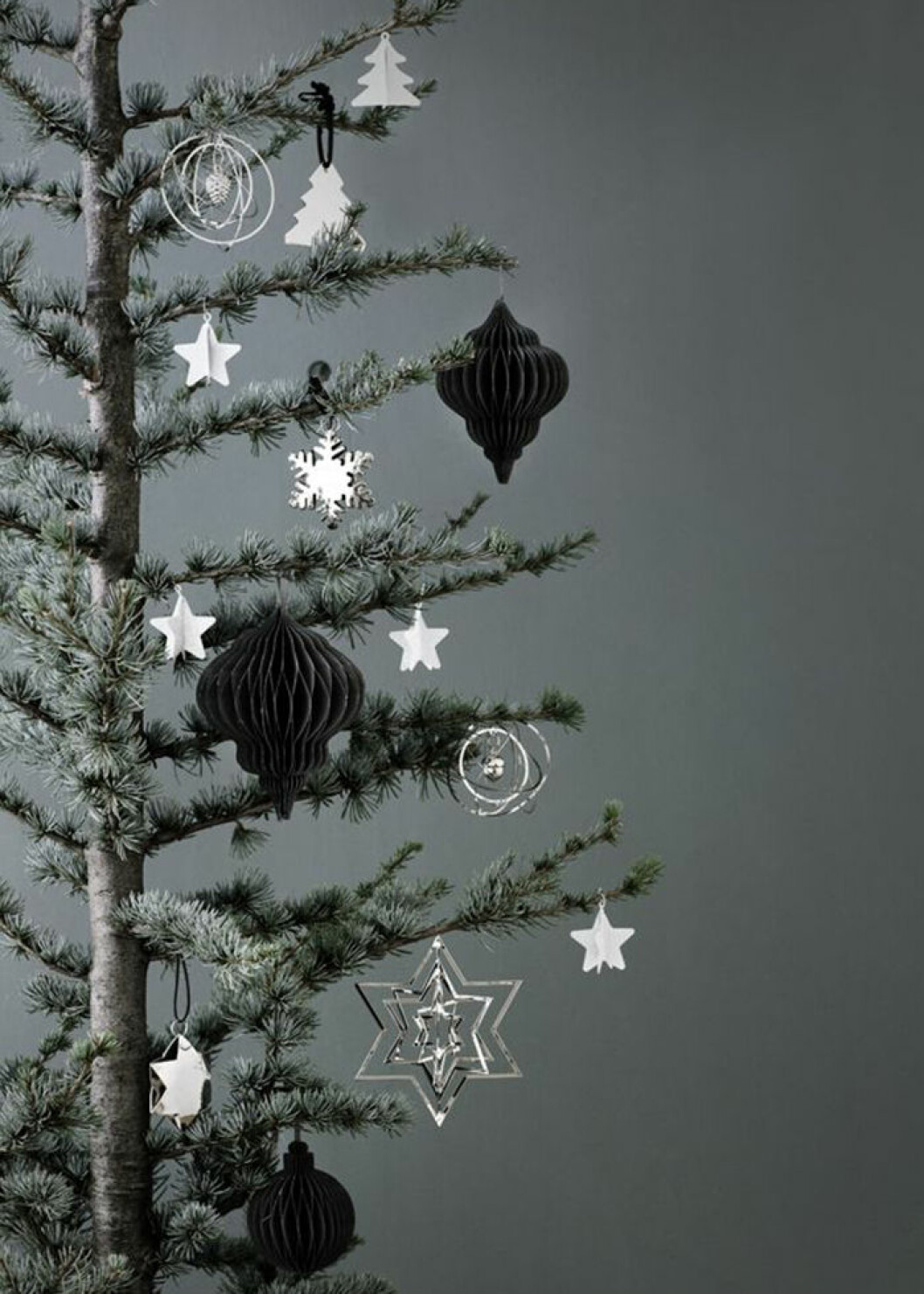 Monokrom gran med pynt i svart och silver