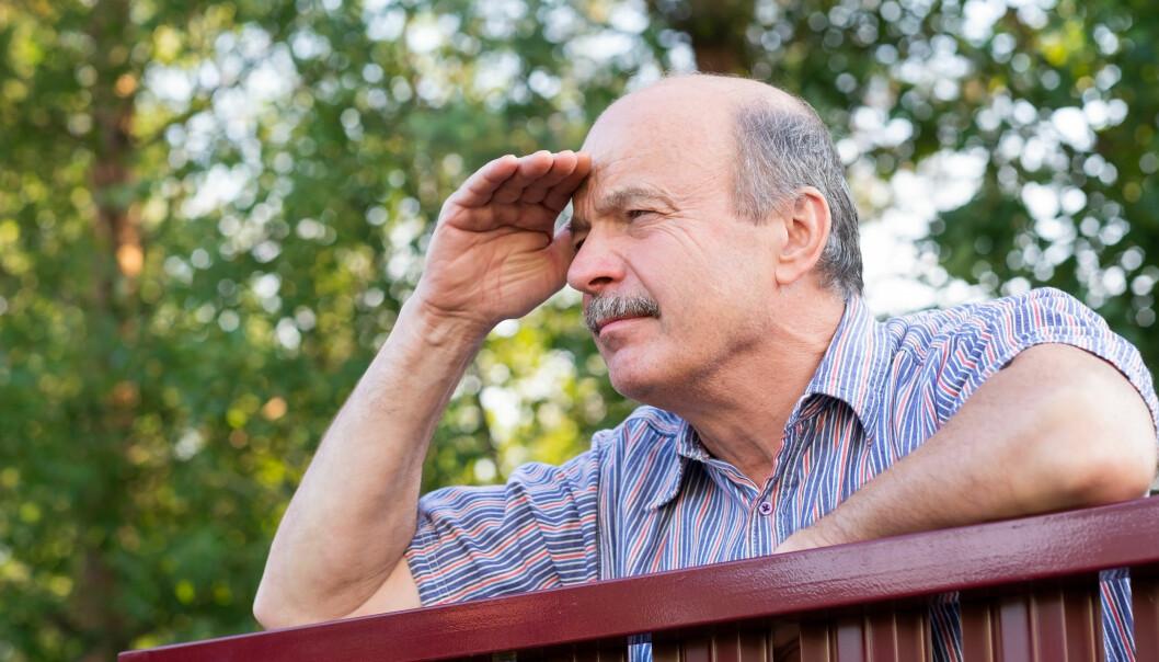 En äldre man spanar över ett staket