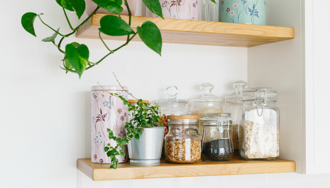 Gröna växter på en hylla med burkar i köket.