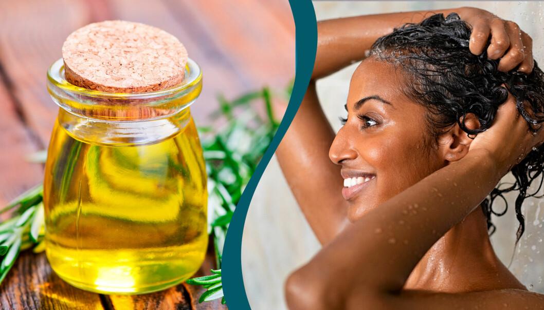 Kvinna masserar hårbotten i duschen och en bild på rosmarinolja