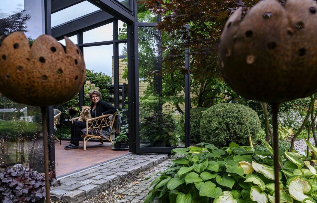 Äntligen blev det ett orangeri! Att tomten är liten är inget hinder. Trädgårdsdesignern Maria Dremo Sundström fick in det på ett vackert sätt. Här njuter hon tillsammans med hunden i orangeriet.