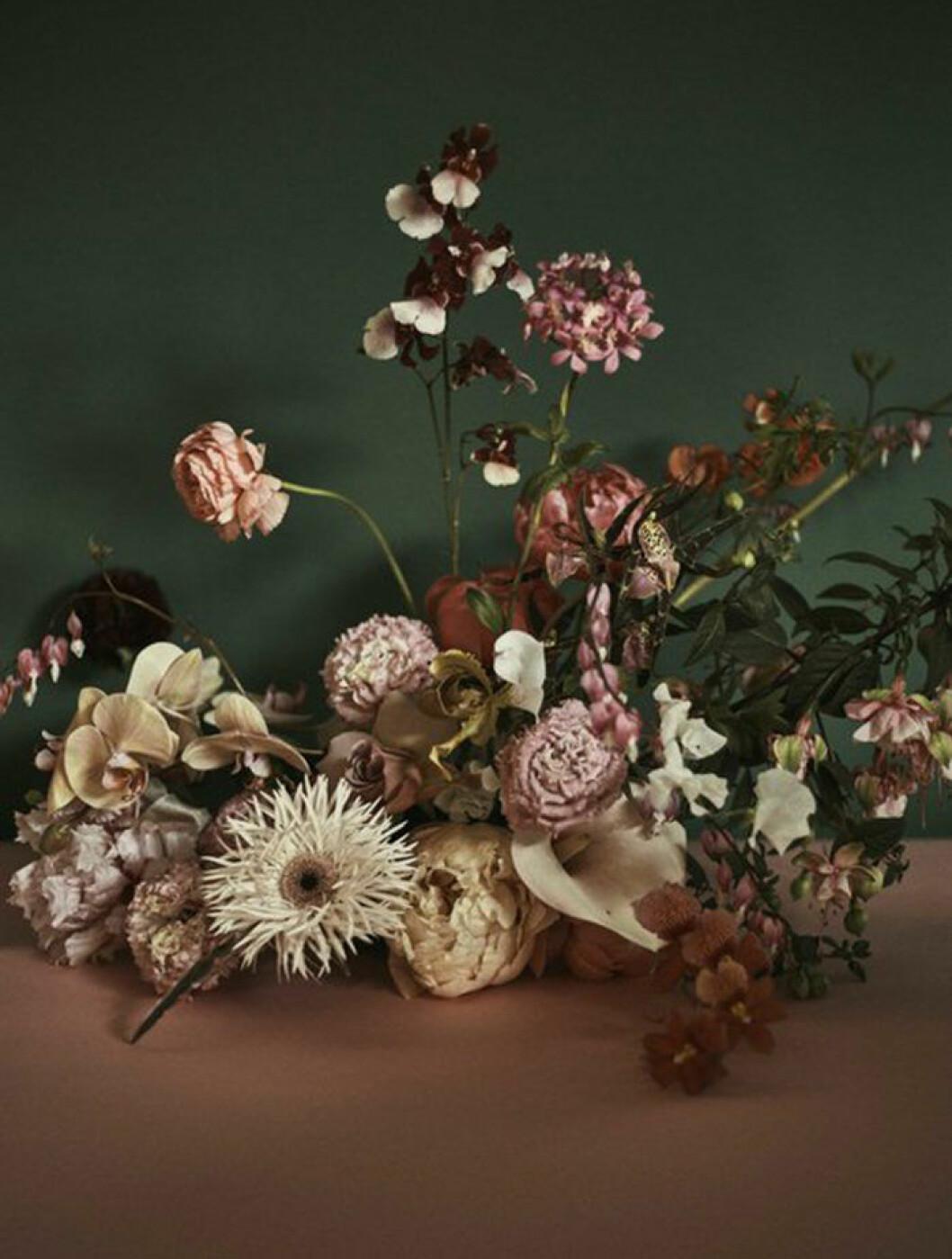 Dova färger bland blommor i höst