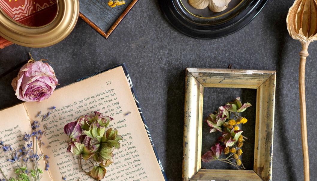 Torkade blommor och vackra äldre ting på en mörk duk