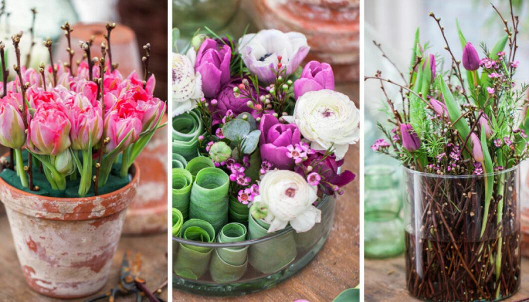 Gör vårfint med tulpaner – här är inspiration till vackra krukor!