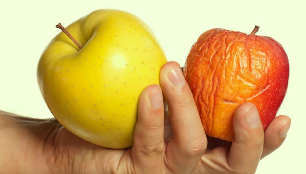 frysa in äpplen