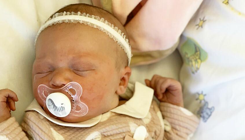 Lilla mirakelbebisen Lilly föddes i en toalett.