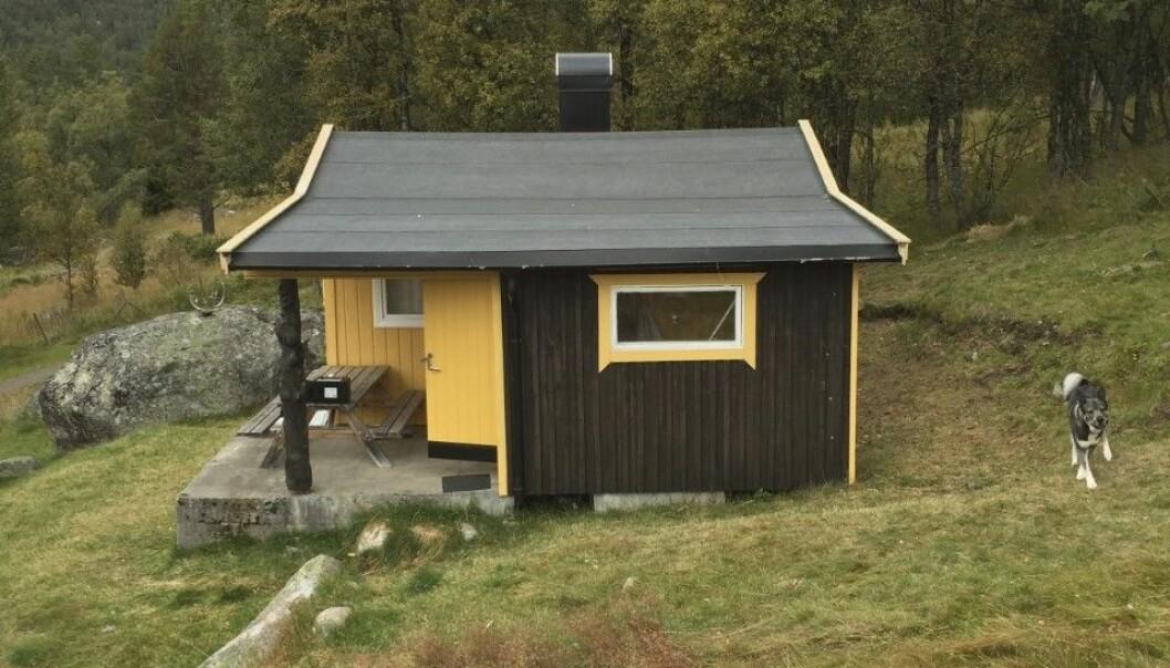 Sven Rune var på jaktresa när hans och Camillas dotter föddes – inte bara på utan även – i toaletten.
