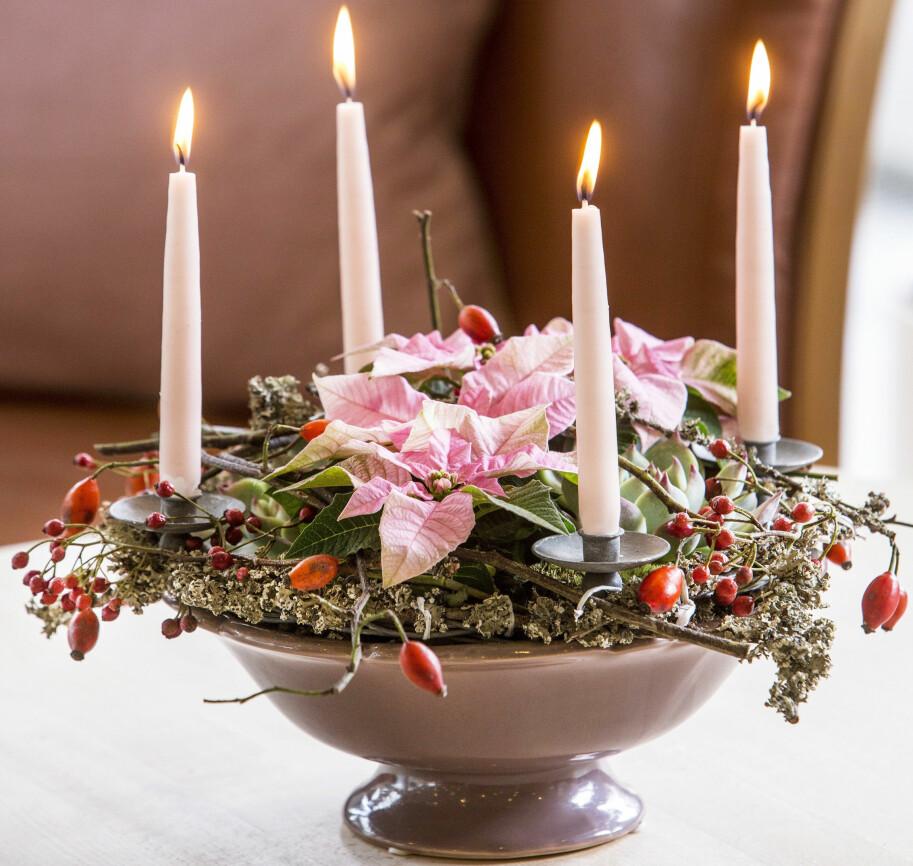 Ljusstake gjord av skål med julstjärnor, mossa och nypon.