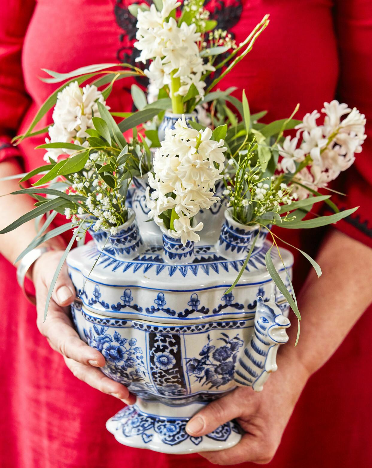 Hyacint på snitt i holländsk vas som egentligen är avsedd för tulpaner.
