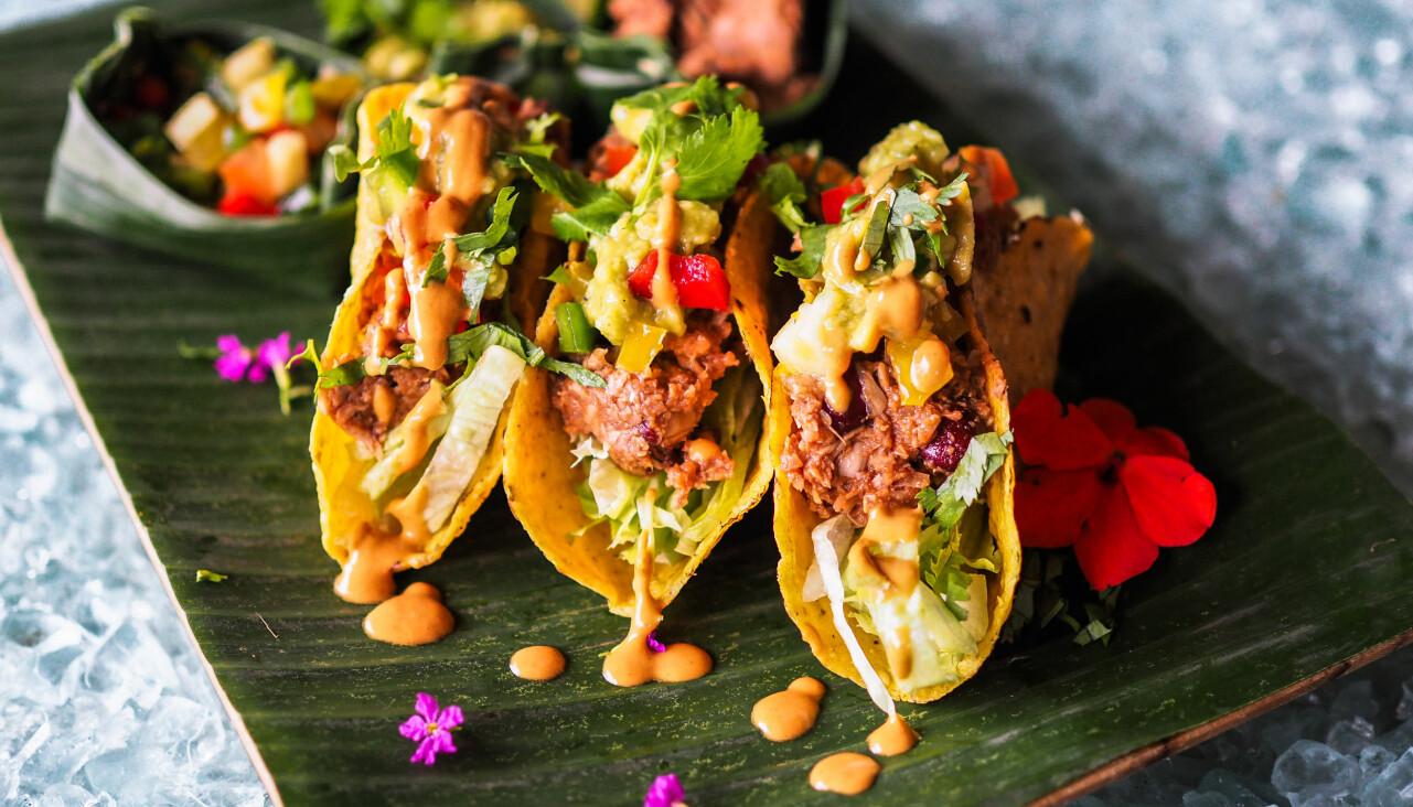 Vegansk tacos med jackfruit.