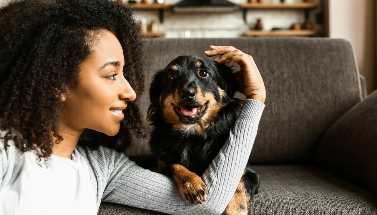 Kvinna gosar med hund i soffa.