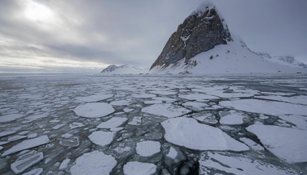 Berg och is vid Bellsund, Svalbard.