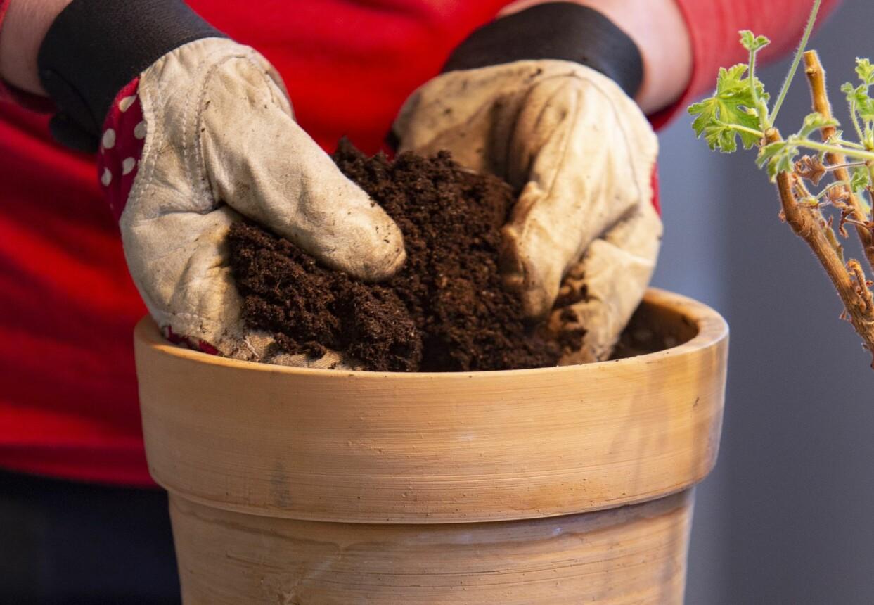 Kvinna fyller på med ny jord i en ren kruka.