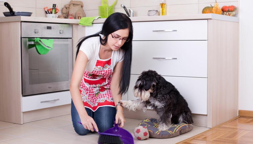 En kvinna städar upp efter sin katt.
