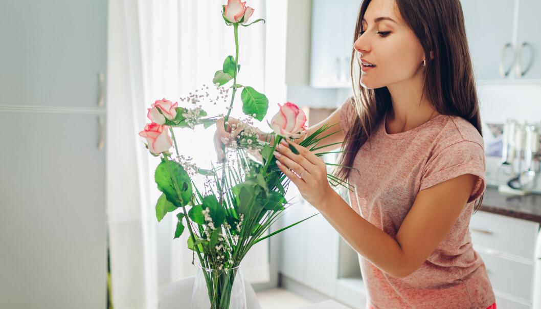 En kvinna inspekterar sina rosor.