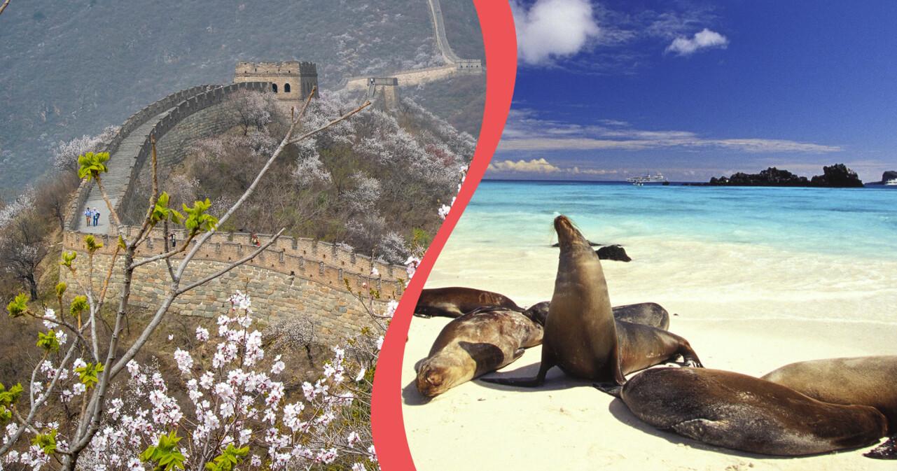 Kollage av kinesiska muren i Kina och galapagosöarna.