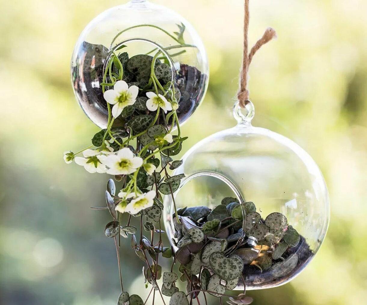 Glasamplar som hänger från snören.