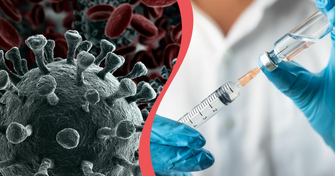 Kollage av coronavirus i närbild och spruta med klar vätska för att illustrera coronamedicin.