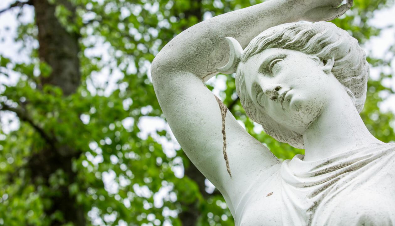En vit staty av gudinnan Diana i närbild framför grönt buskage.