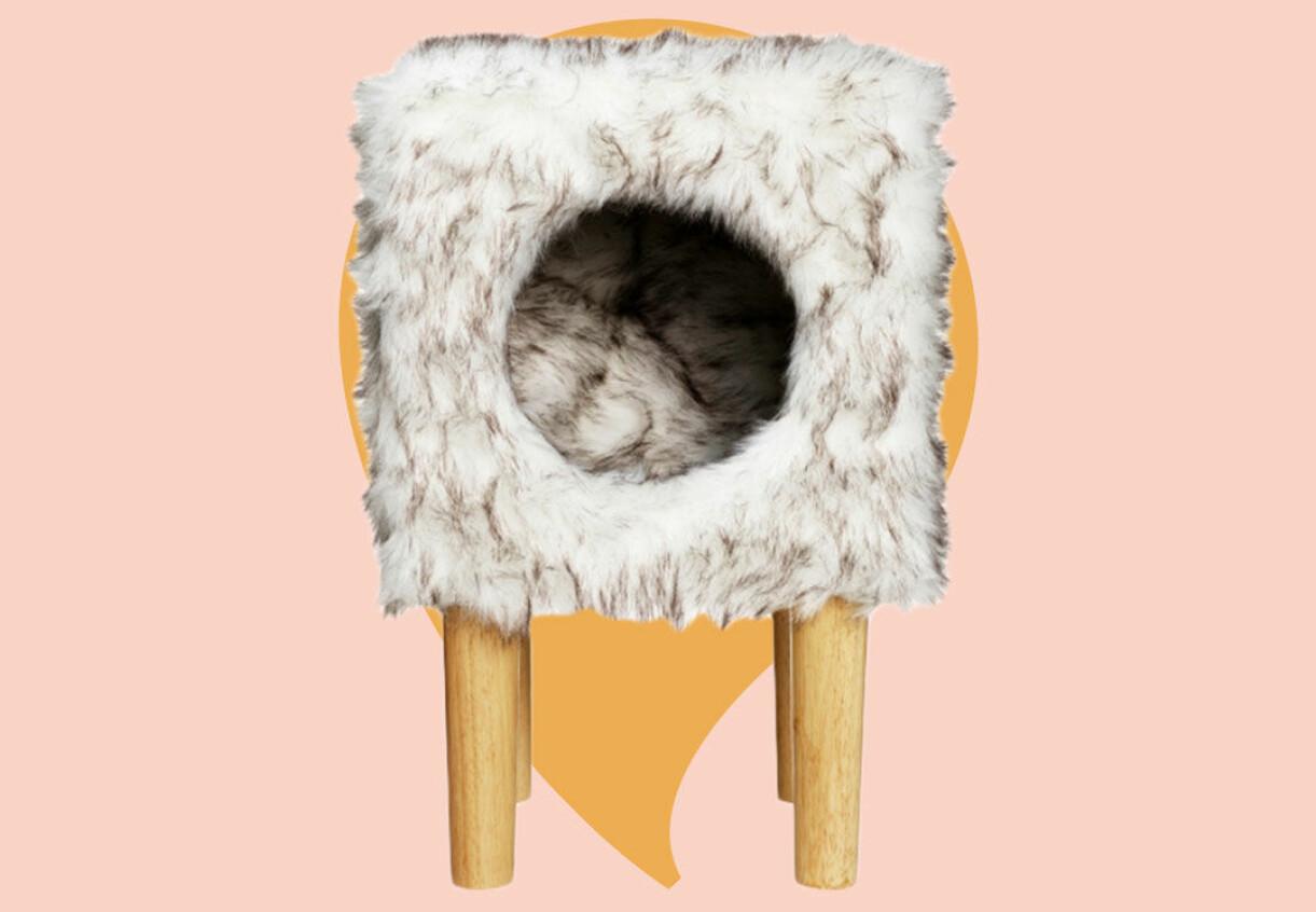Kattsäng igloo
